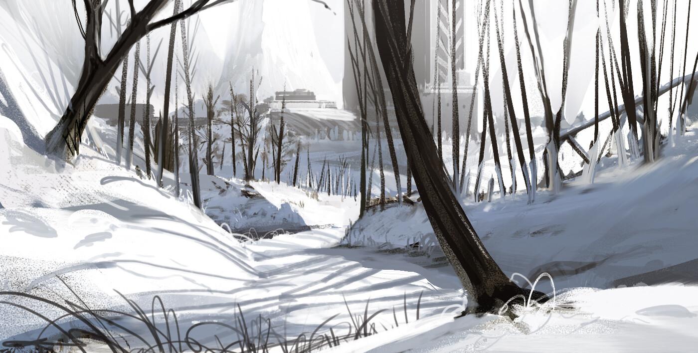 Snow study