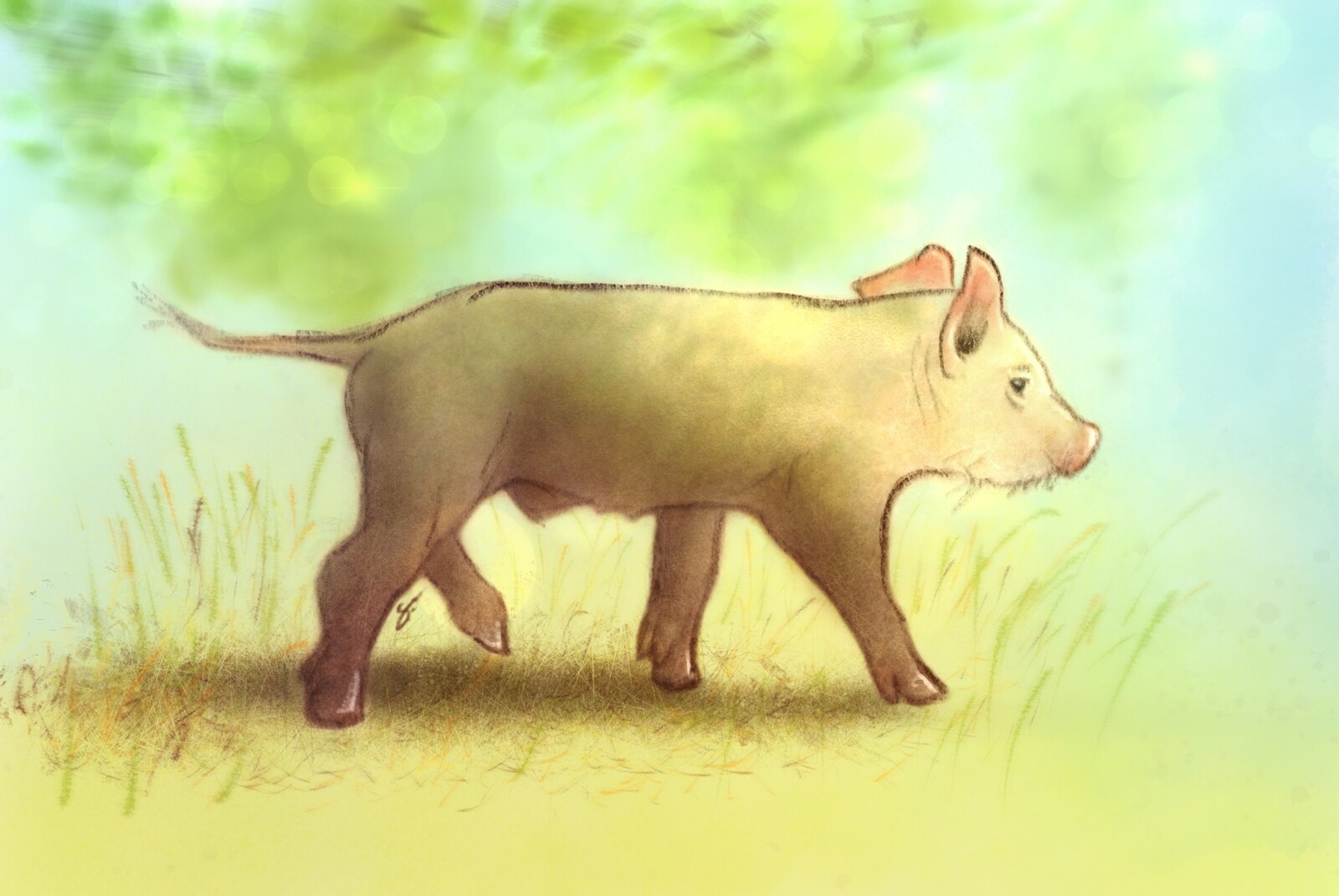 Piglet in Procreate