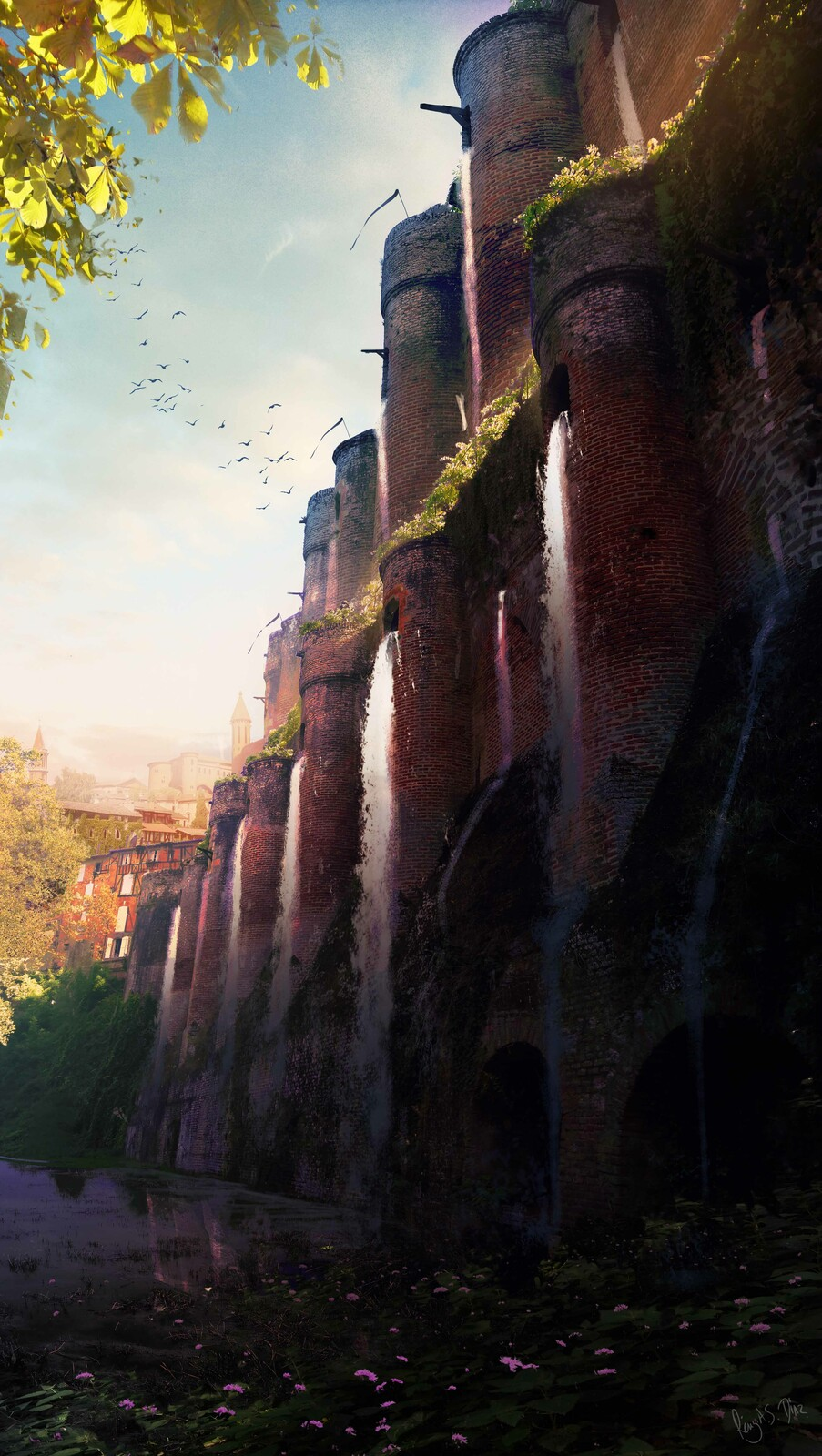 Royaume du vin / Wine Kingdom. [02]