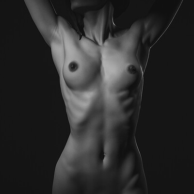 Female Anatomy Tutorial