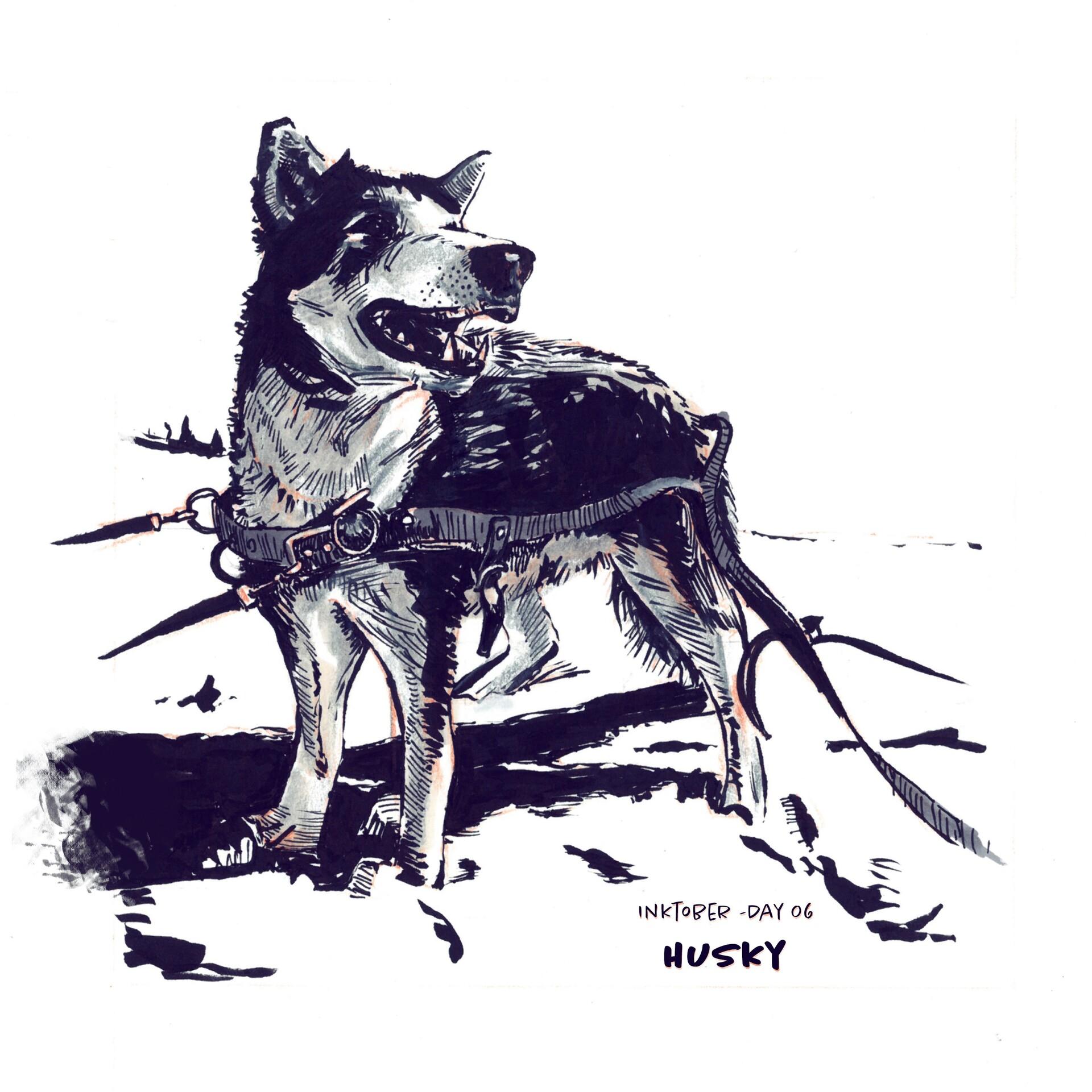 Day 06 - Husky