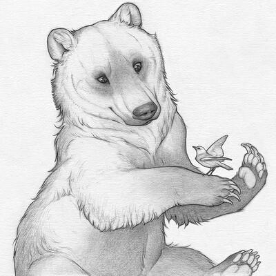 Tiina purin squareshow bear bird x full