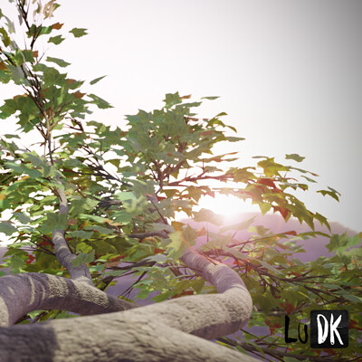 Eric quesada tree render