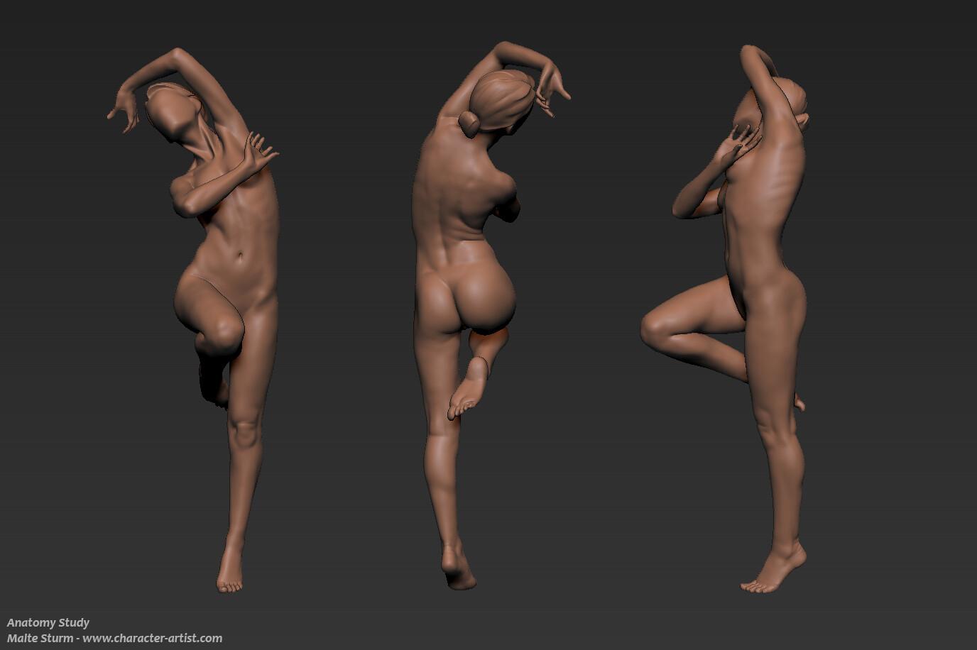 Malte sturm sculpt female anatomy