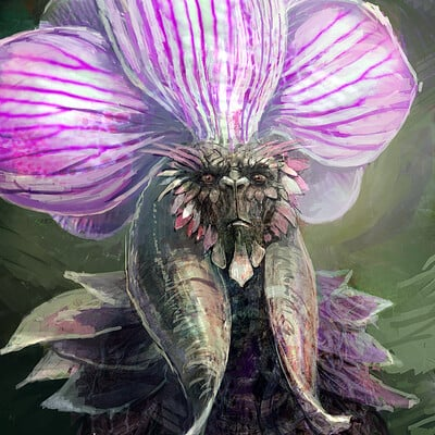 Attila gerenyi orchidking copy
