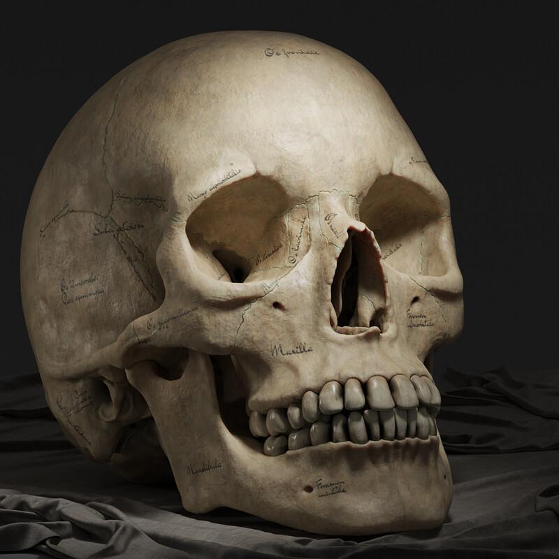 Skull 2.0