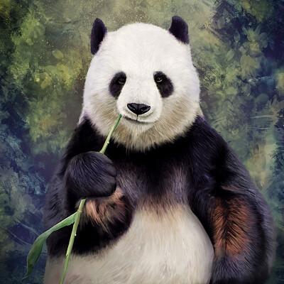 Xavier bornert panda