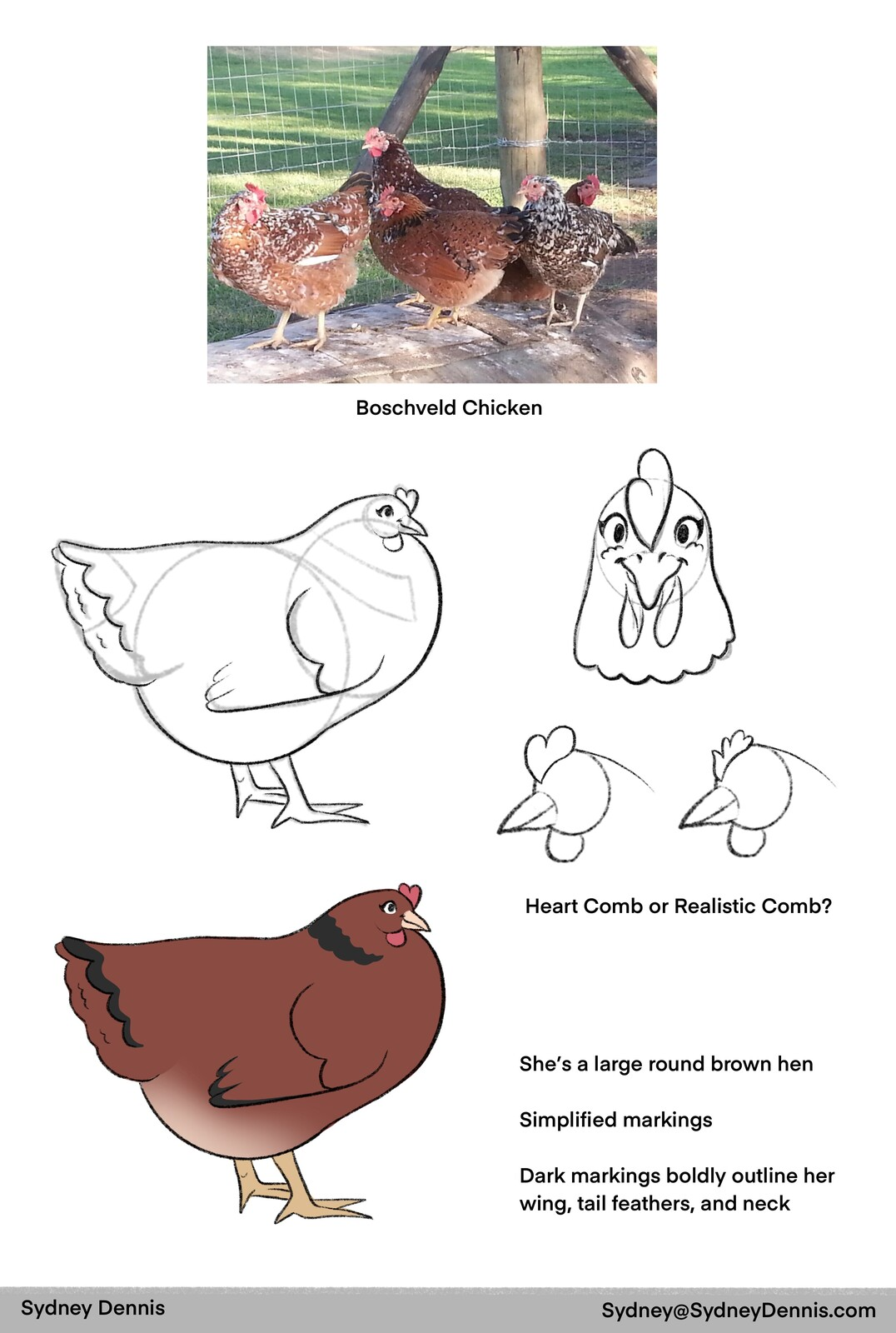 Final Concept Page for a chicken mascot.  We chose a Boschveld chicken because it is a mix of multiple hearty South African breeds.  It is both large, strong against disease, and a great egg producer.