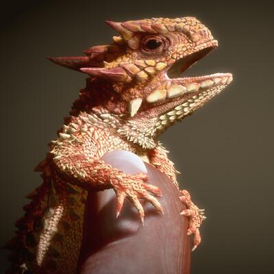 Eric keller keller lizard 002