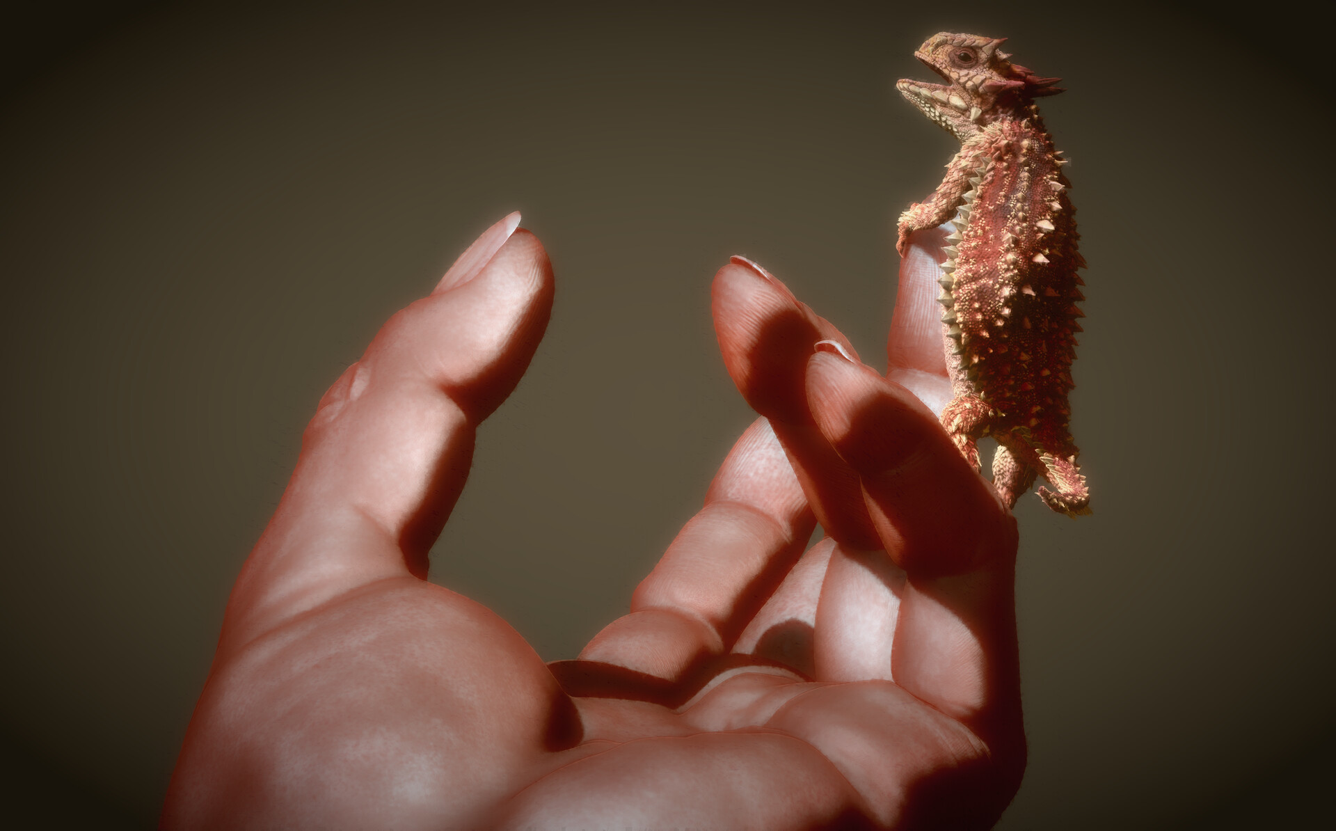 Eric keller keller lizard 004