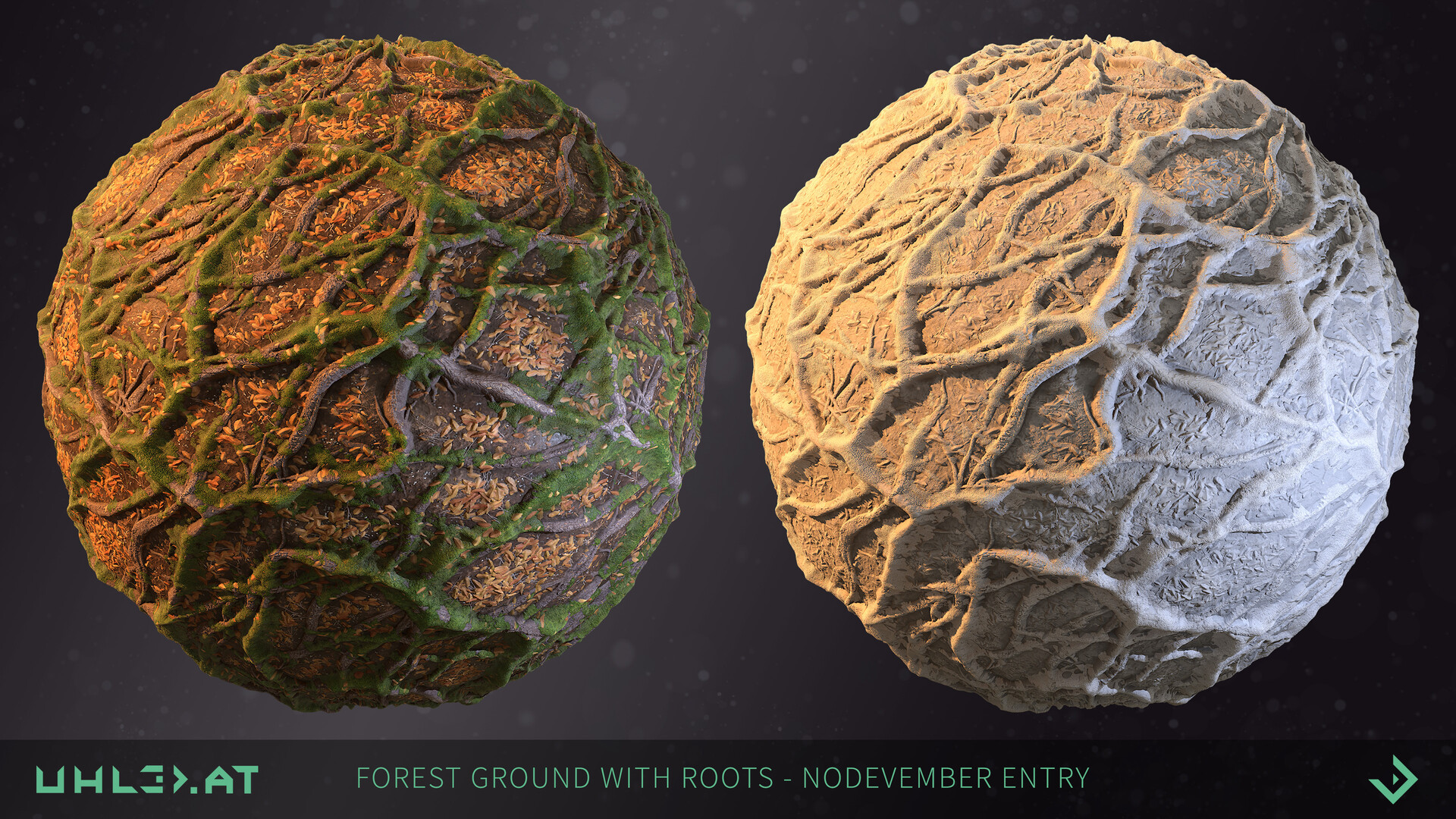 Dominik uhl organic woodgrounds with roots 03