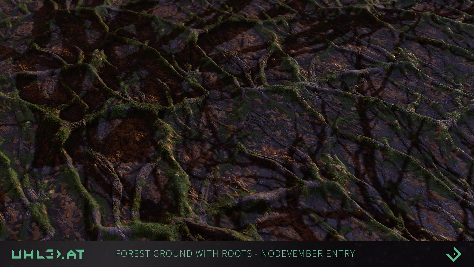 Dominik uhl organic woodgrounds with roots 04