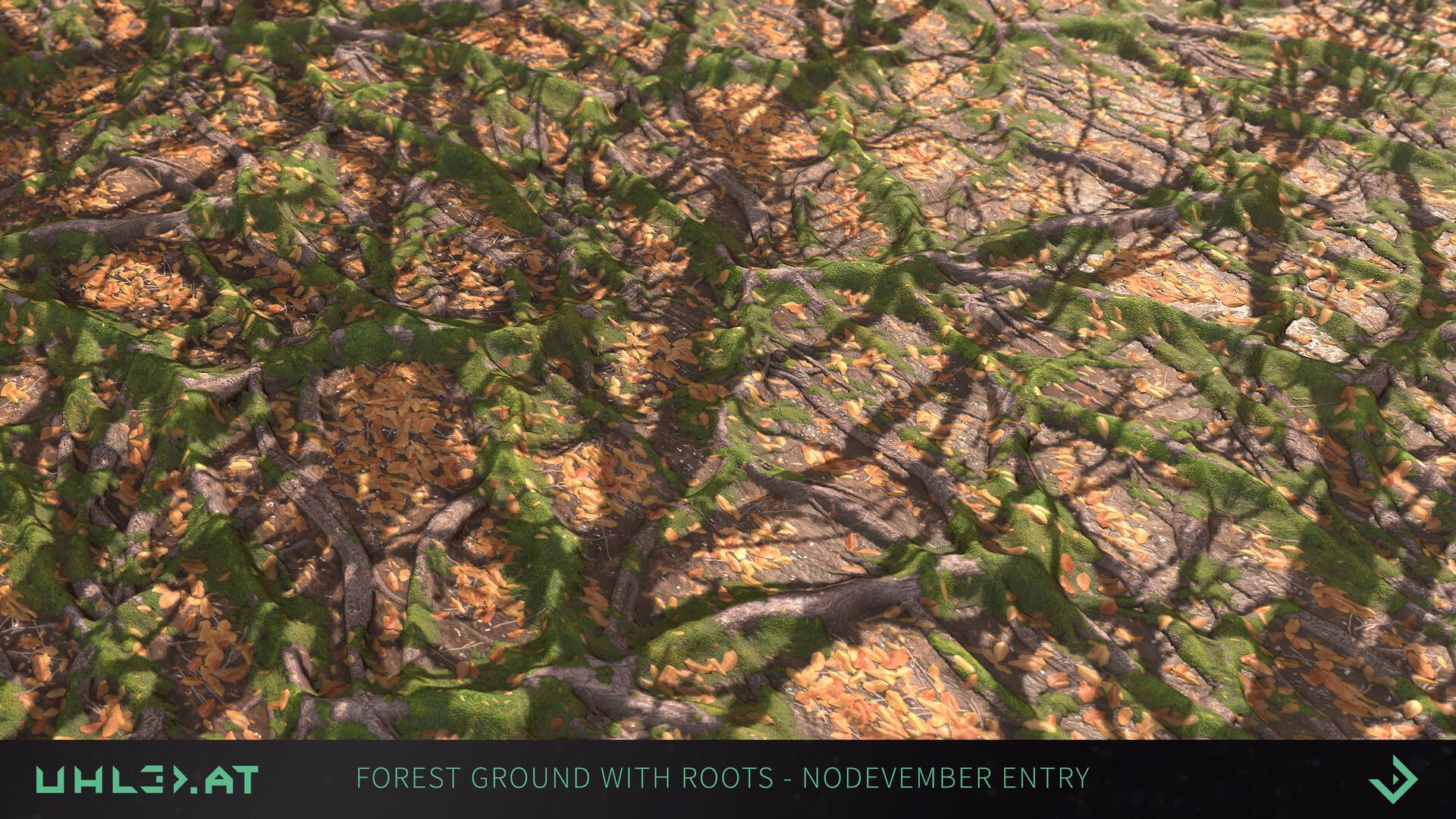 Dominik uhl organic woodgrounds with roots 05