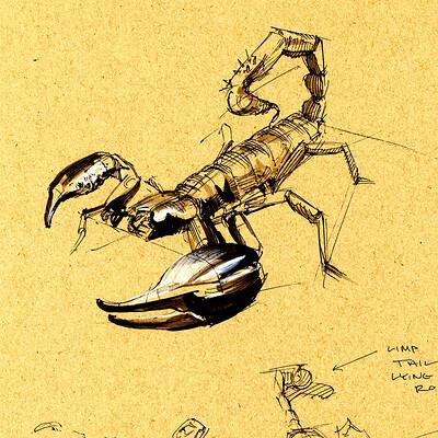 Drake truber arachnid6
