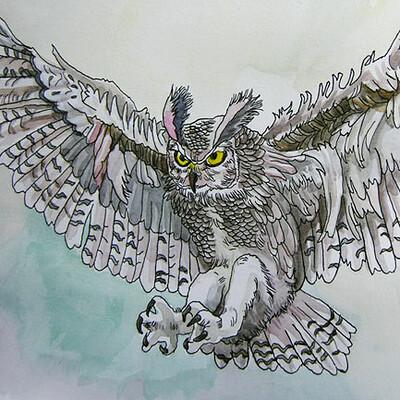 Yiska chen owl2 wc