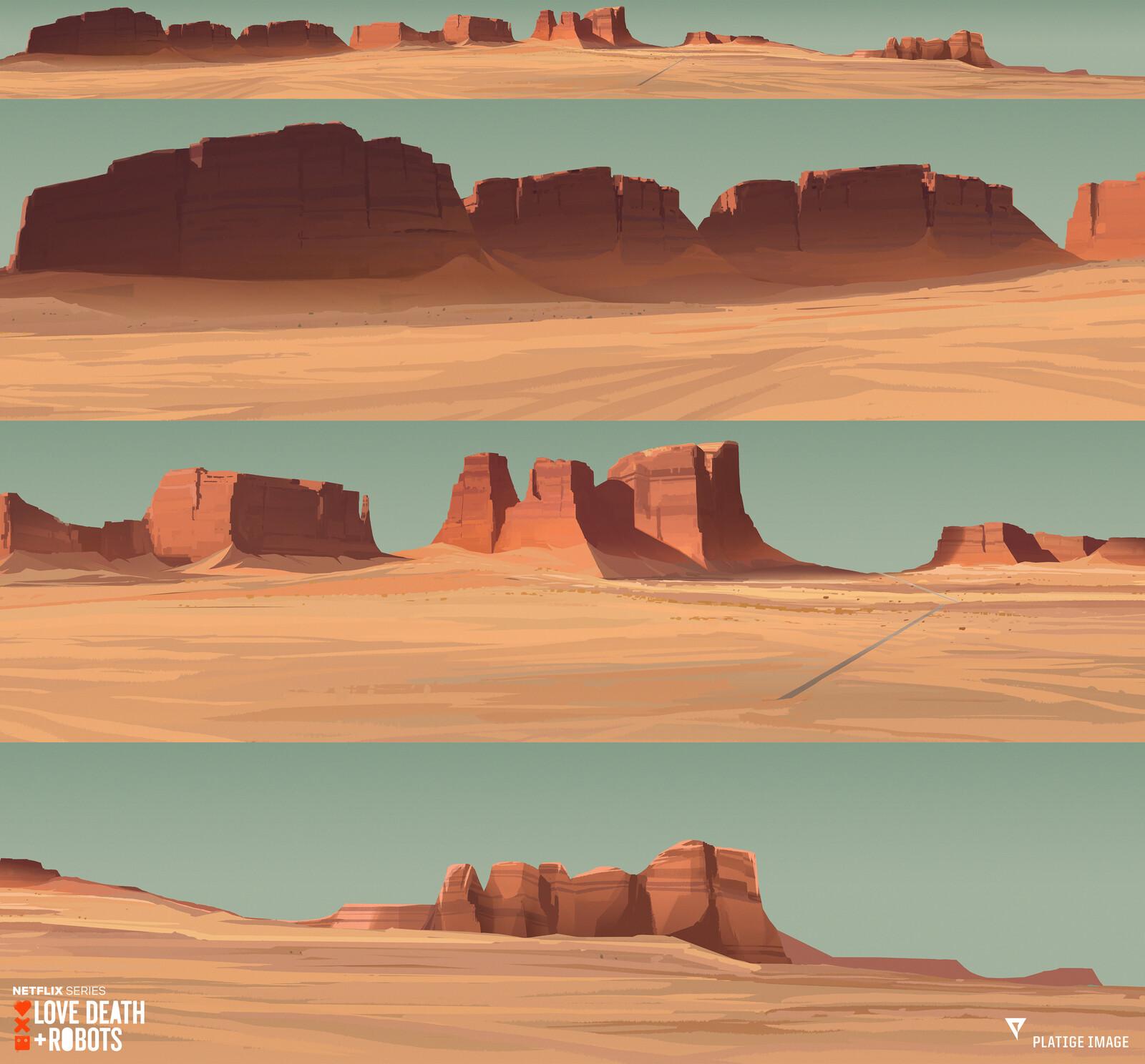 Main panorama of the desert