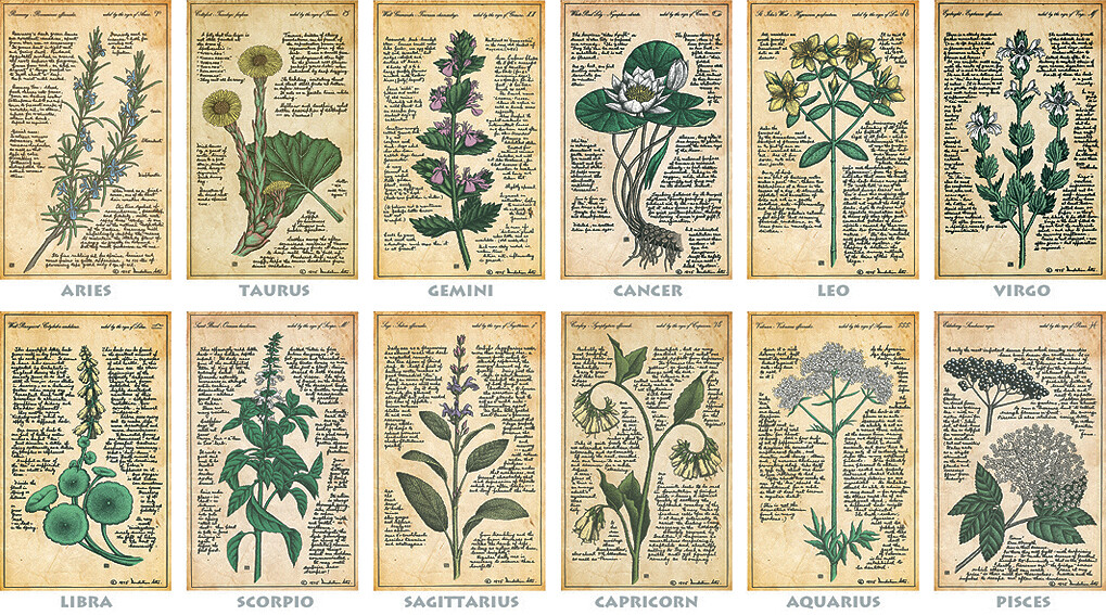 """HEALING HERBS OF THE ZODIAC"" series of print designs"