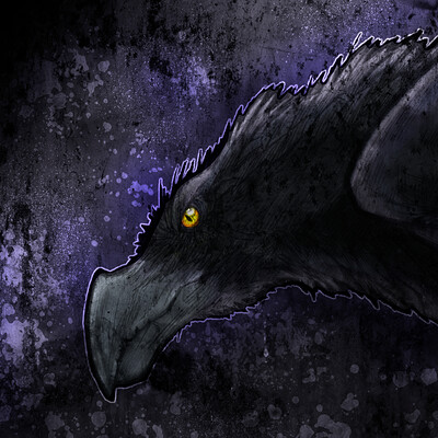 Paulo possoline jr raven