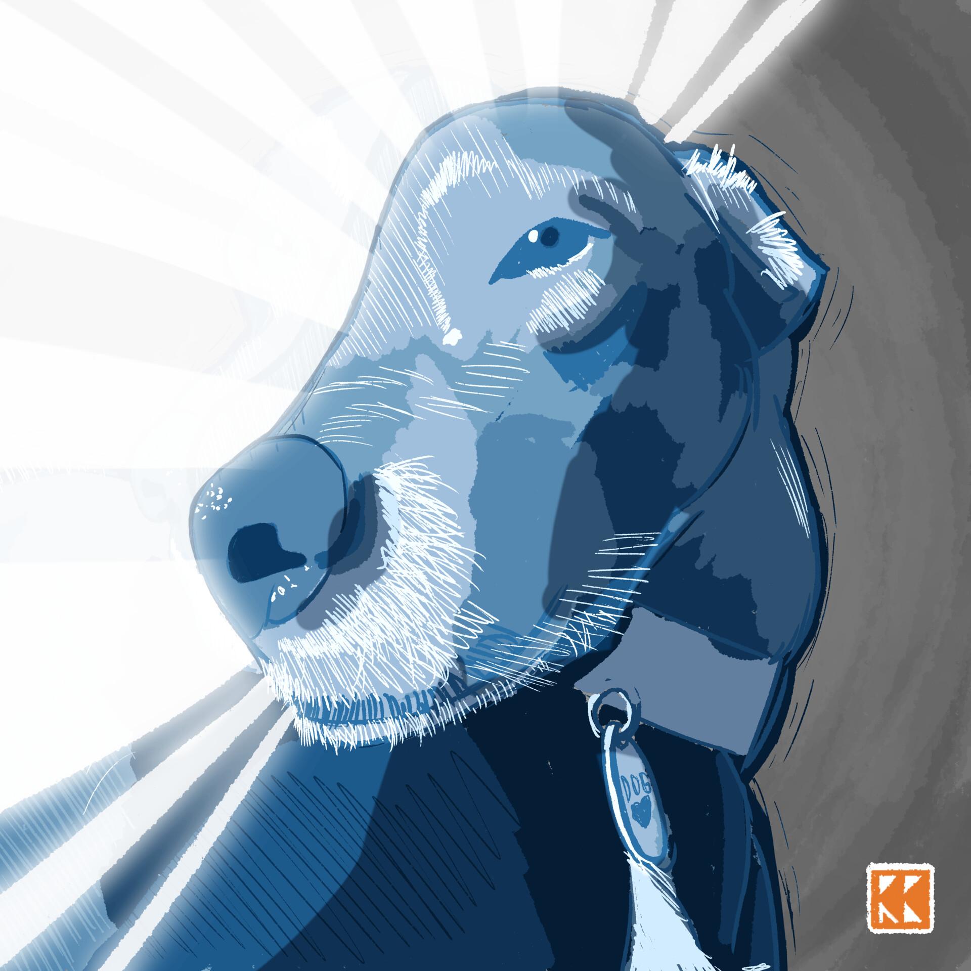 Ryan barry enlightened dogger