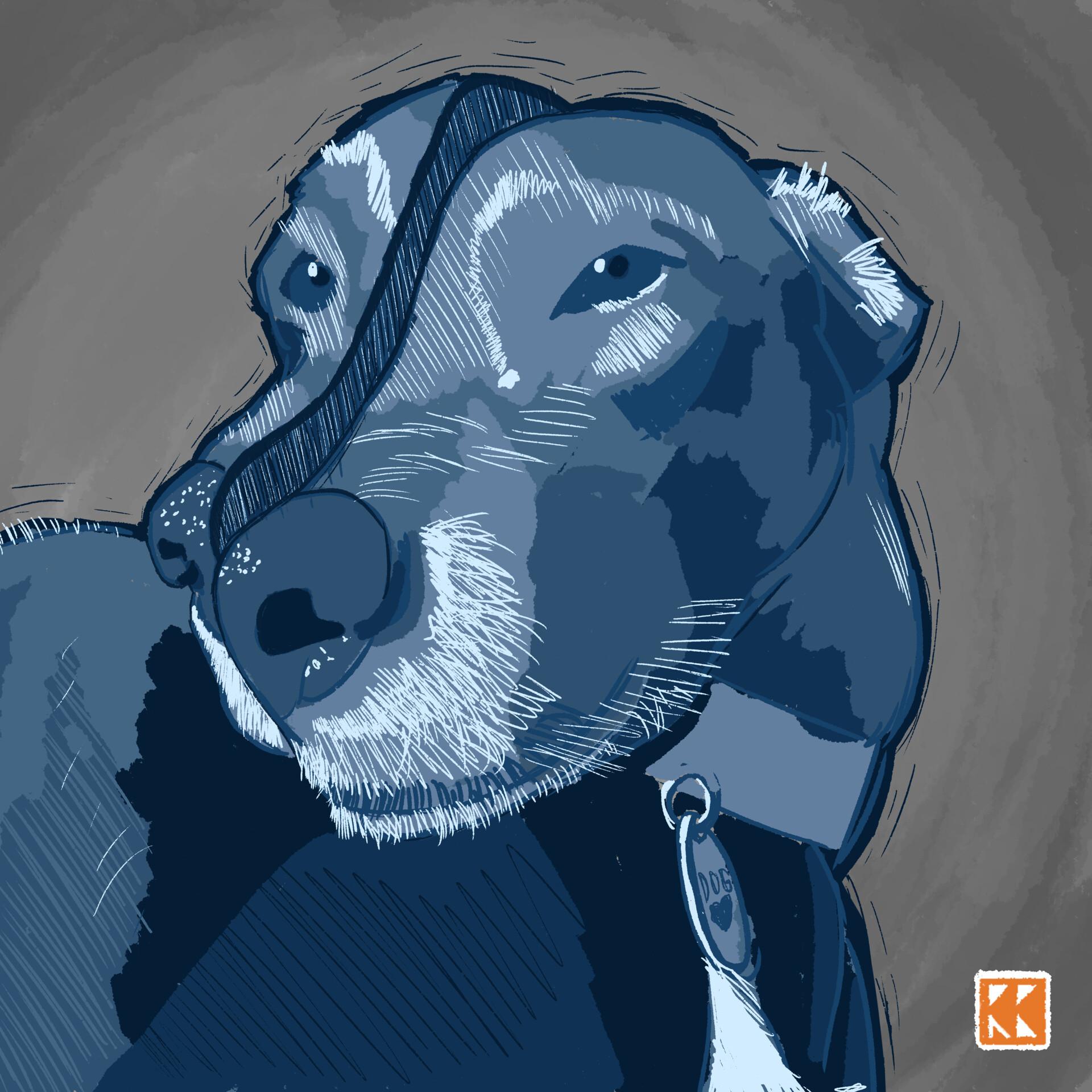 Ryan barry dogger