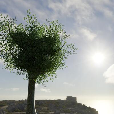 Jonathan walton tree