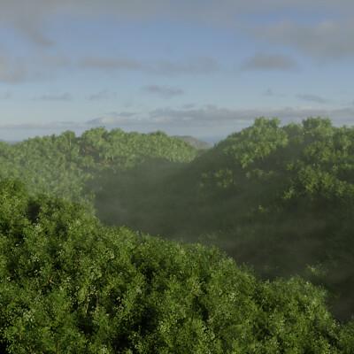 Jonathan walton trees