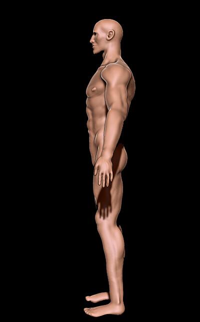 Kat townsend anatomyside