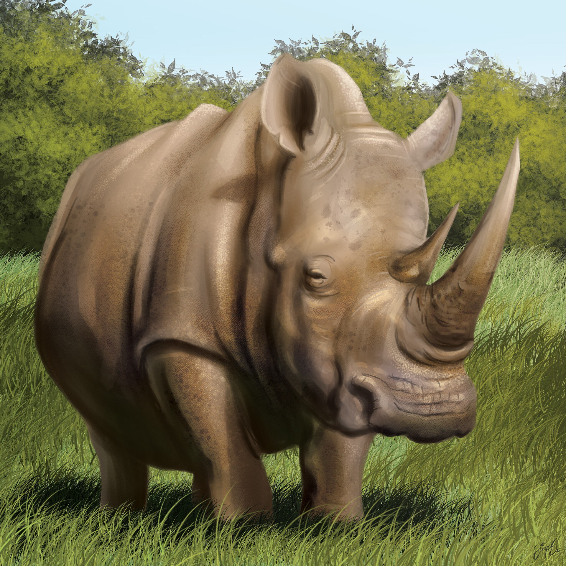 Tile illustration - Rhinoceros