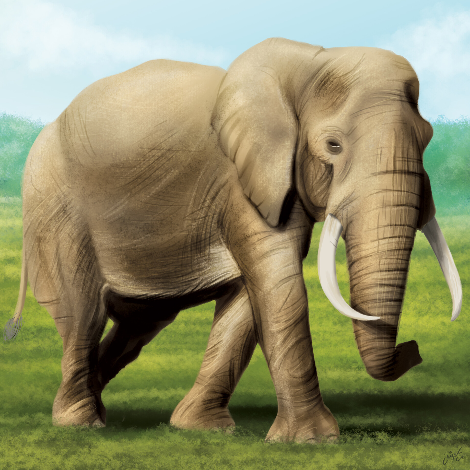 Tile illustration - Elephant