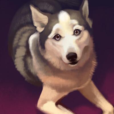 Stephanie koch kyoskidog
