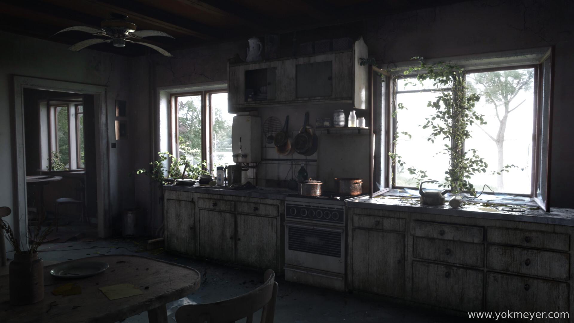 Yok meyer kitchen