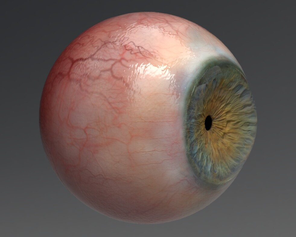 Look development of photorealistic eyes for the character.