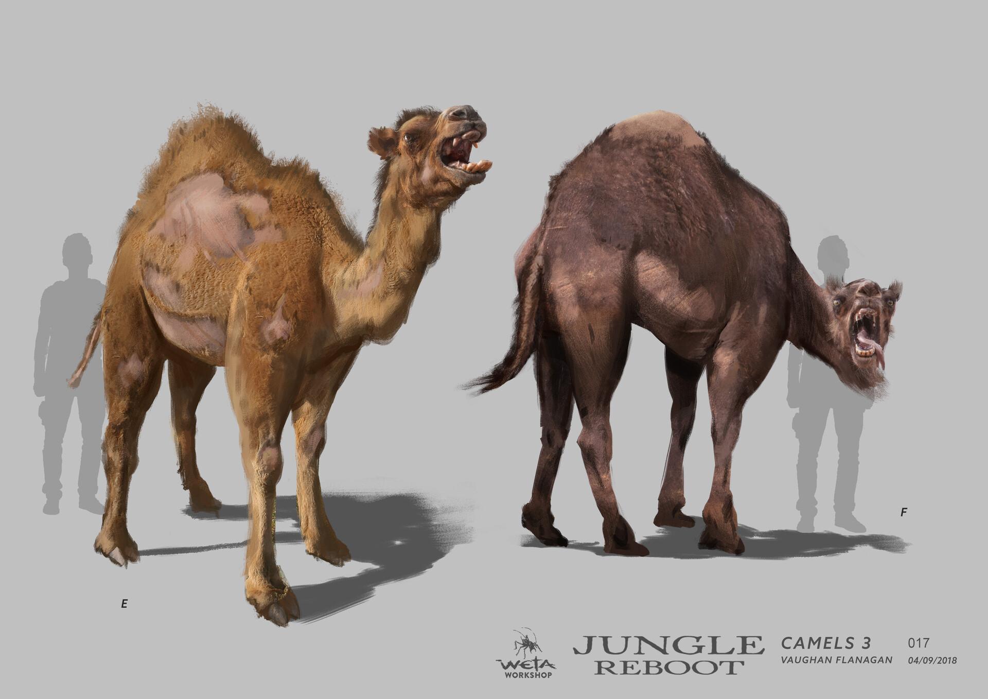 Weta workshop design studio 017 jr camels 3 vf