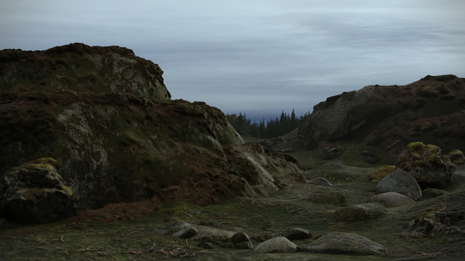 Rocks Path