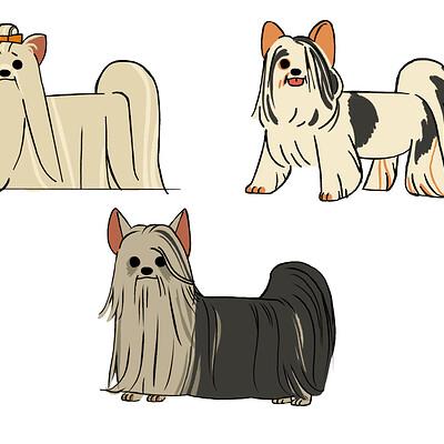 Yeseul lee yorkshire terrier