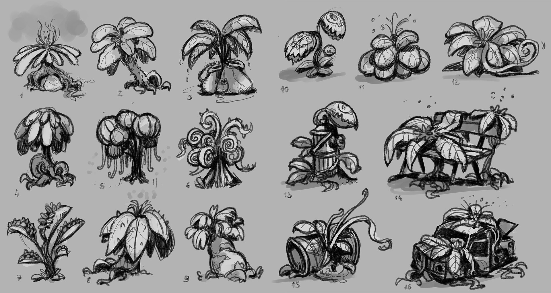 Plants option sketching