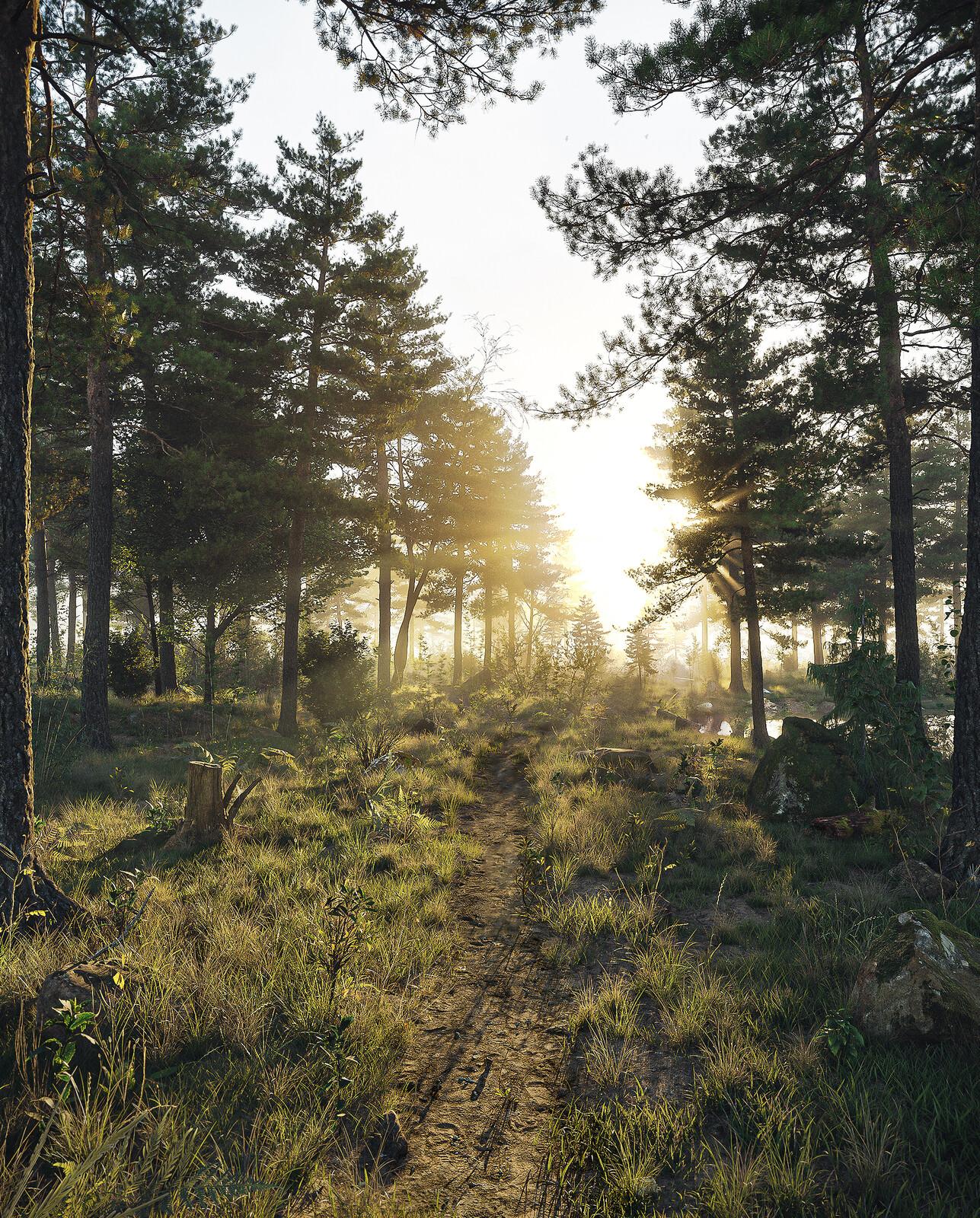 Forest001.jpeg - 100% CG