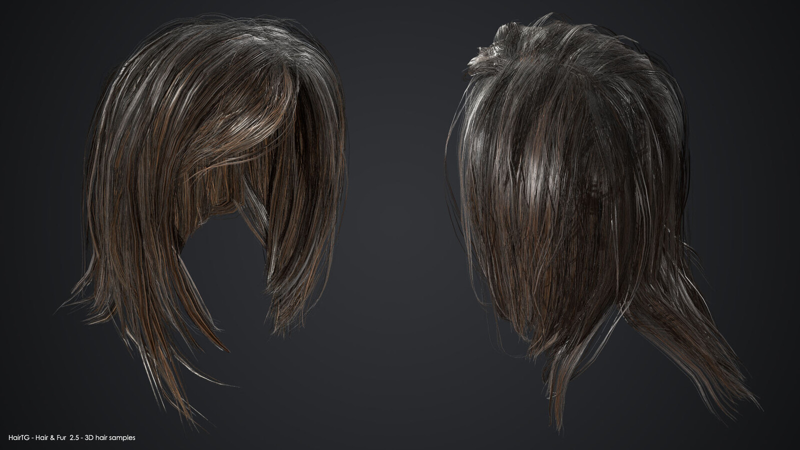 Sample 3D hair models
