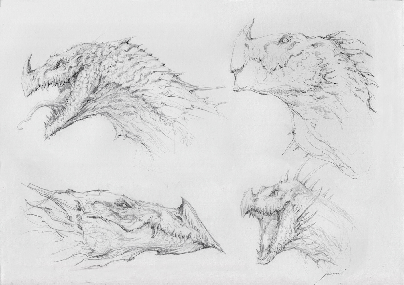 Pencil dragon sketches