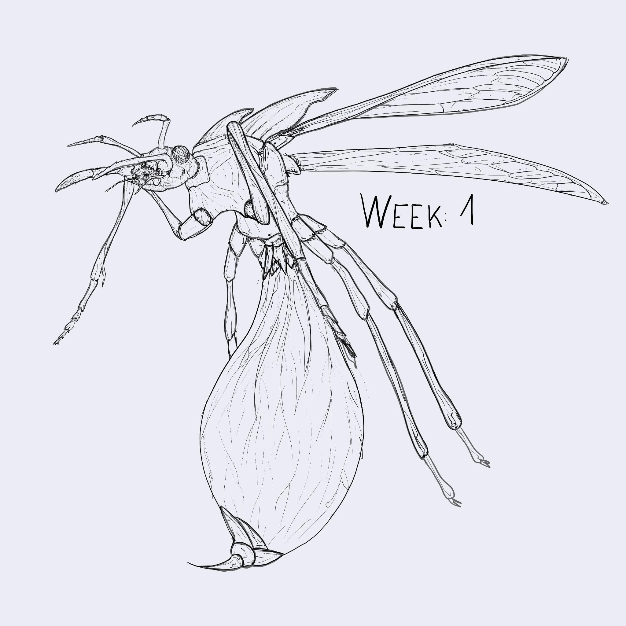 Week 1: Flight