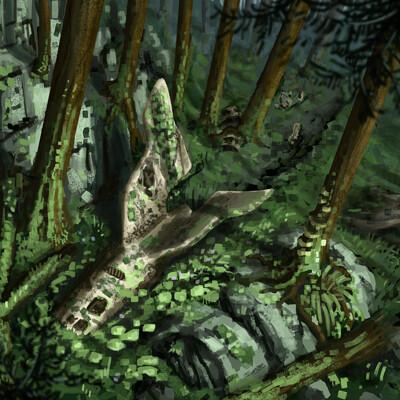 Amir dror set forest version2