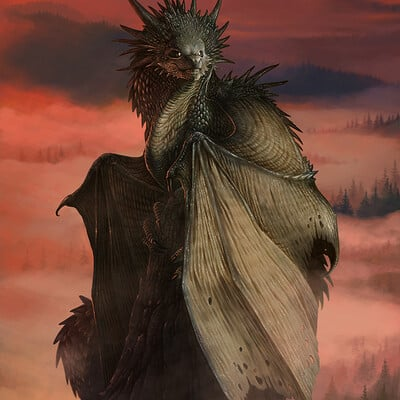 Loic canavaggia dragon sentinelle 6