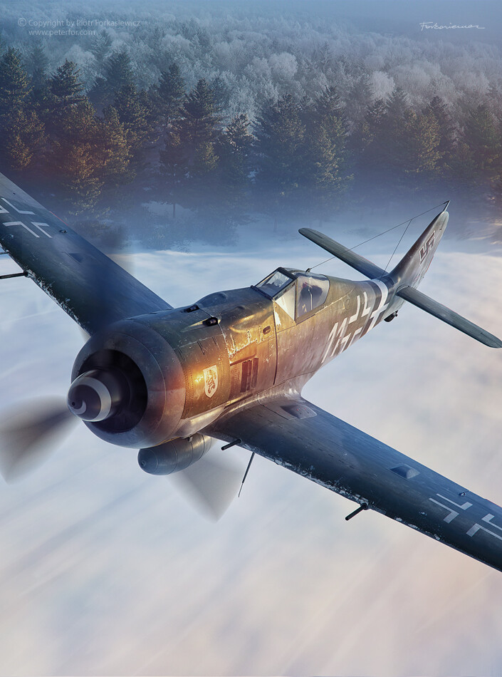 FW190 Operation Bodenplatte