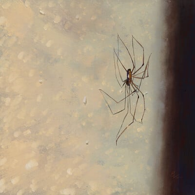 Erica lee your friendly spider small