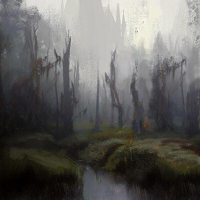 Mohammx qureshi 1582303984577 forest fog2