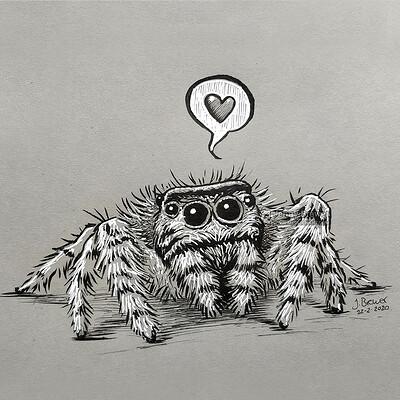 Jenny brewer spider x