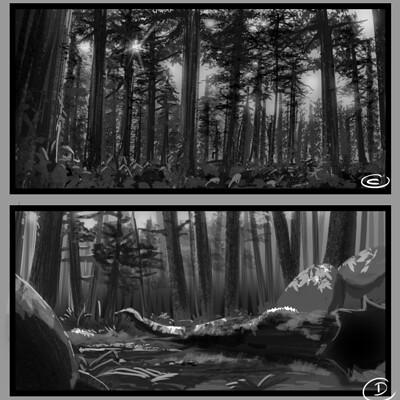 Ernesto sin bocetos bosque