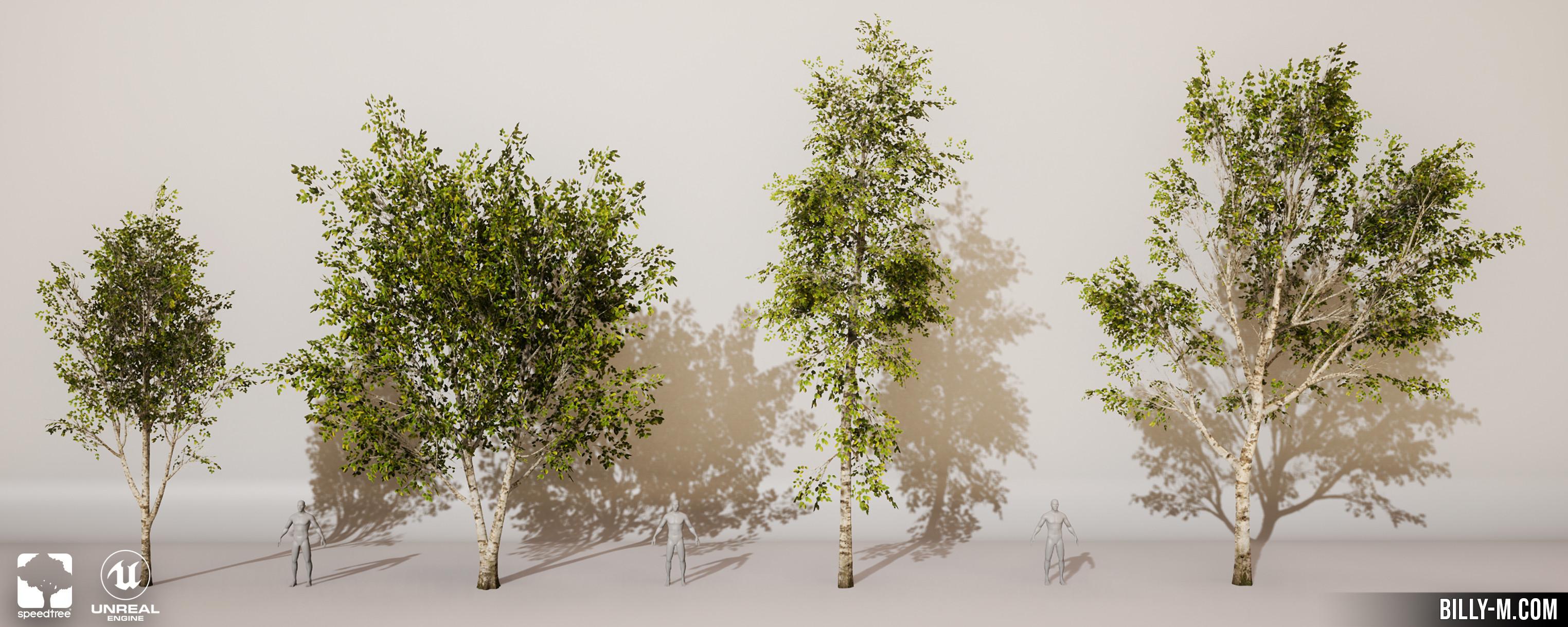 Tree Variations