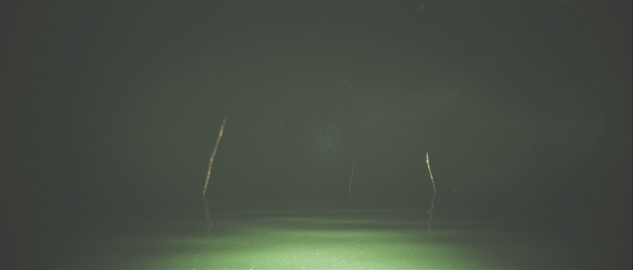 Still frame from the video