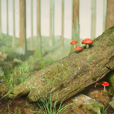 Spencer wright mushroomforest